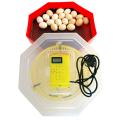 Cleo 5T-120x120,incubator cu termometru