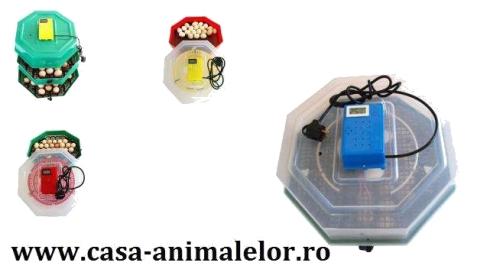 incubator de oua